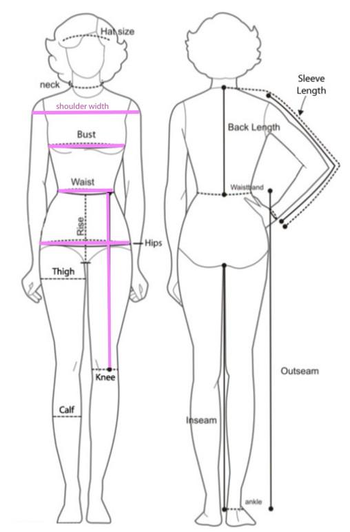 chart body